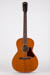 Waterloo WL-14 Acoustic Guitar Full